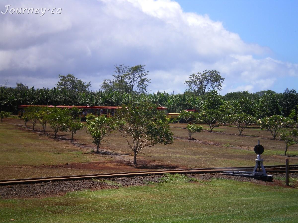 Pineapple Express Train Tour